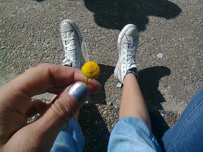 Älskar, älskar inte, blomma