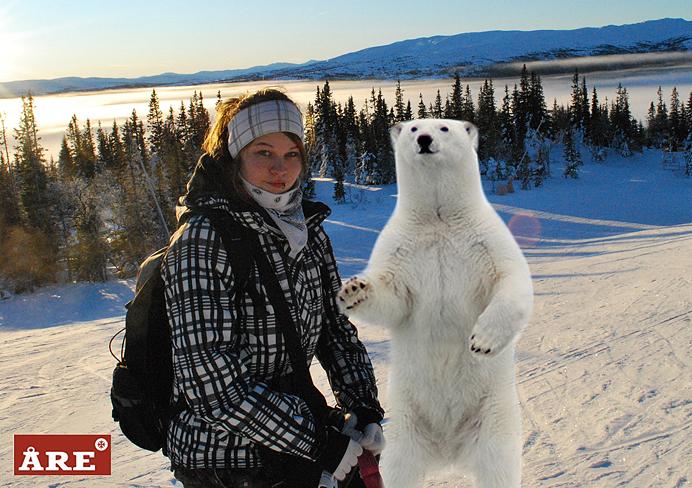 Det finns isbjörnar i Åre