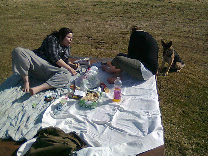 picnic picknick picnick picknic