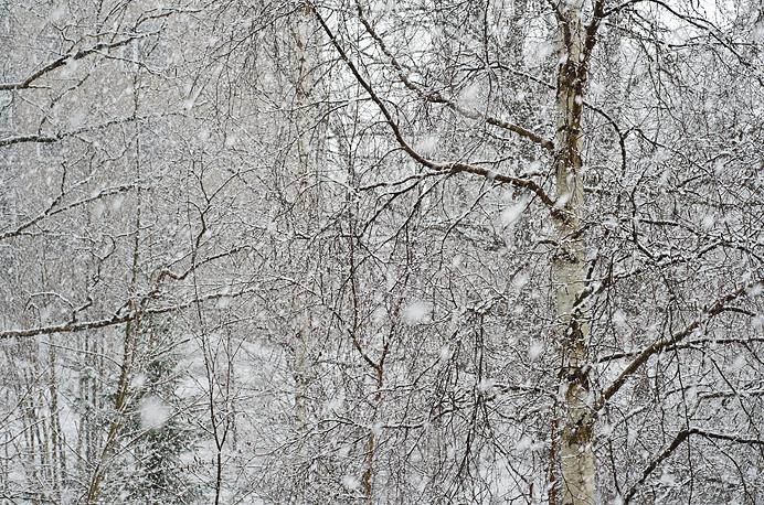 Snö vår 2013
