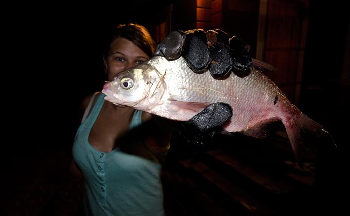 Ruda fisk